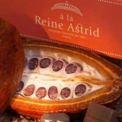 Box À La Reine Astrid